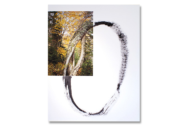 """O"" 2012 20 "" x 16 "" 51cm x 40.6cm Archival digital print, Indian ink photo-Lorraine Gilbert, Christopher Varady-Szabo"